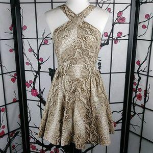 Moda Int'l VS Cotton Python Party Dress Low Back
